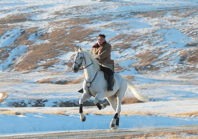 Il leader nordcoreano Kim Jong-un in sella ad un cavallo durante una nevicata sul Monte Paektu