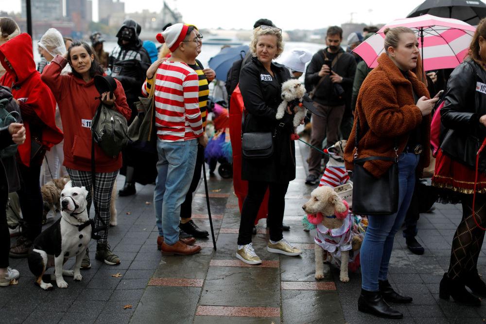 La gente in attesa della sfilata dei cani in maschera all'annuale Halloween Dog Parade a New York