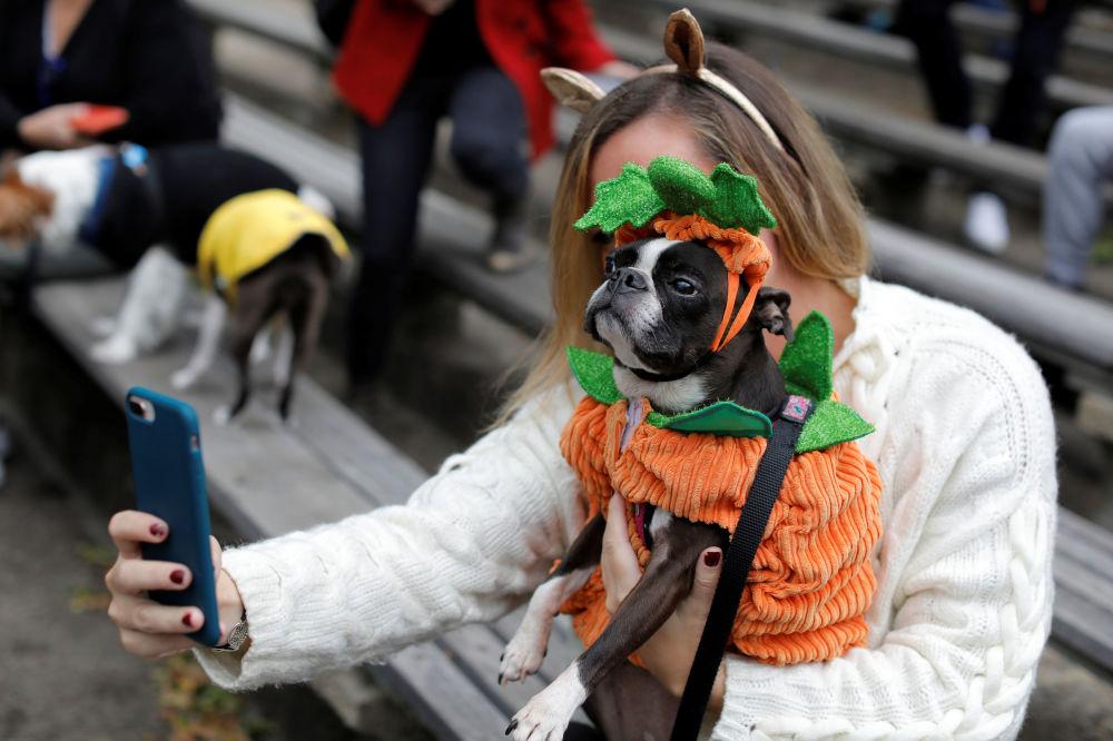 Lindzi Rebernik scatta un selfie con il suo cane, Boston Terrier, all'annuale Halloween Dog Parade a New York, il 20 ottobre 2019.