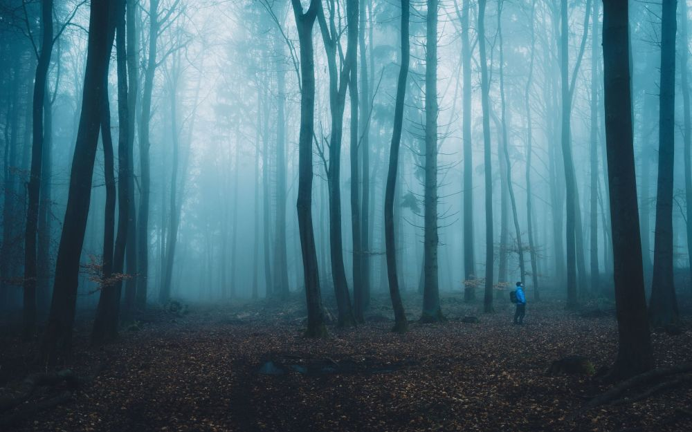La foto 'L'escursionista' presentata dal fotografo tedesco Alexander Schitschka al concorso delle migliori foto del mondo #Blue2019