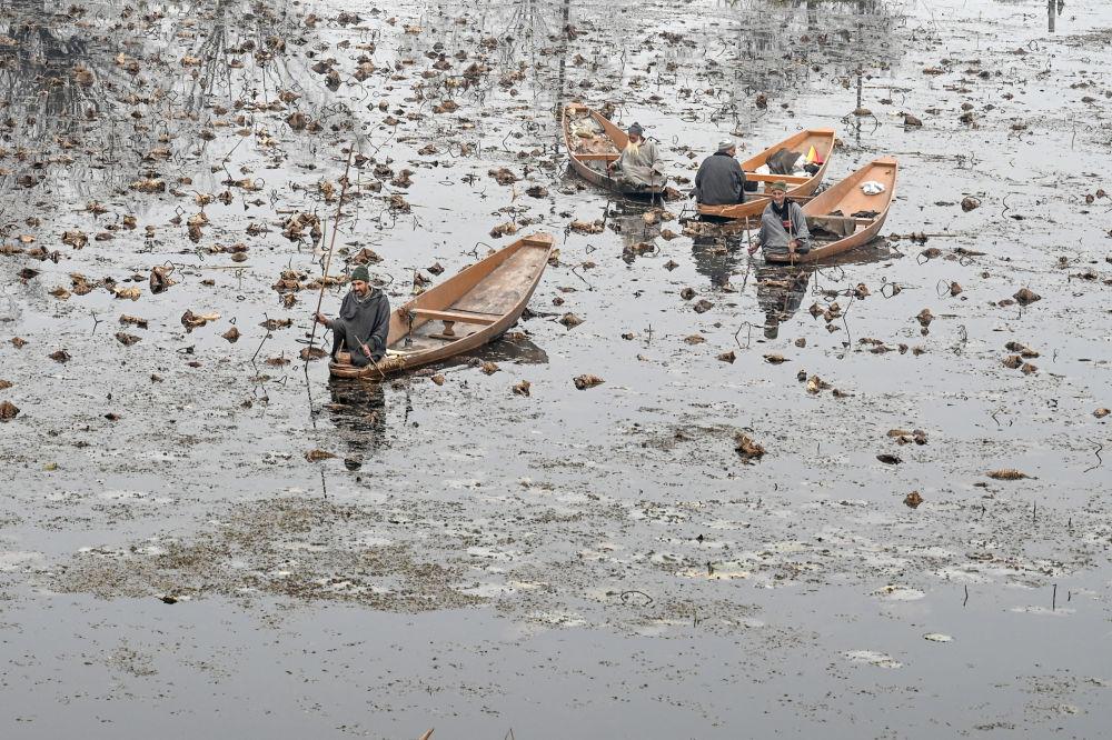 Uomini sulle barche al lago Nigeen a Srinagar, in India.