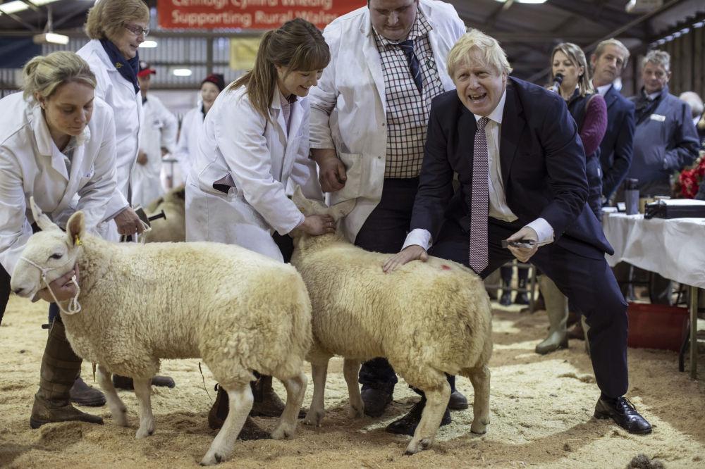 Il premier britannico Boris Johnson visita il Welsh County Show a LLanelwedd, in Galles.