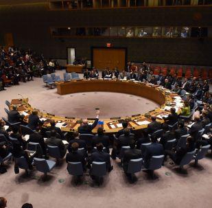 Assemblea generale dell'ONU