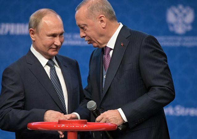 Vladimir Putin e Recep Erdogan alla ceremonia di apertura di Turkish Stream
